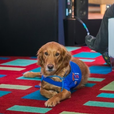 Calling all Pet Innovators