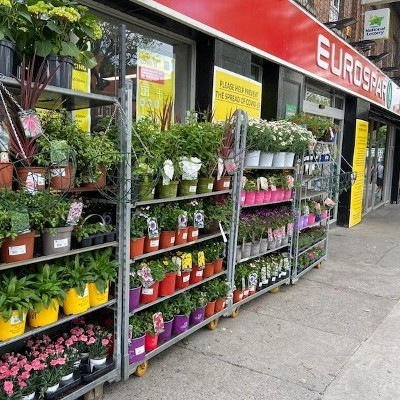 BWG Foods reports €1million in new sales as retailers supply gardening products during COVID-19 lockdown