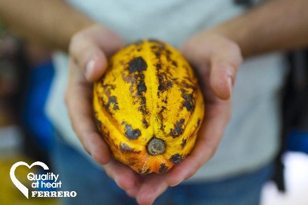 Ferrero publish sustainability report