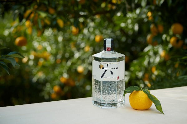 ROKU GIN MAKES ITS ESSENCE KNOWN IN DUBLIN