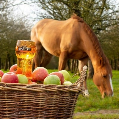 BULMERS PAVES THE ROAD TO CHELTENHAM 2019